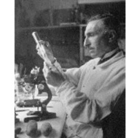 Joseph Magrou (1883‑1951)