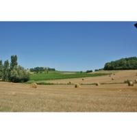 Agriculture et économie en Lot-et-Garonne